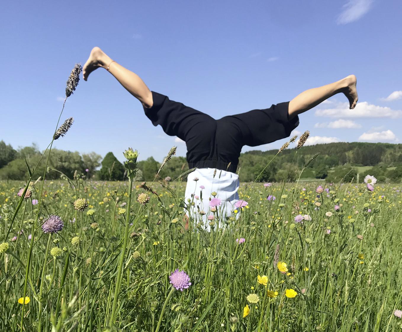 Yogalaune